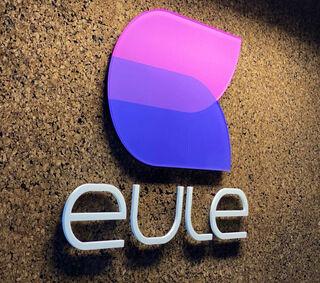 Ruumiline logo - eule