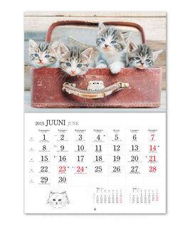 Kassikalender 3. pilt
